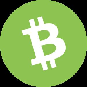 Bitcoin Cash BCH Icon 300x300